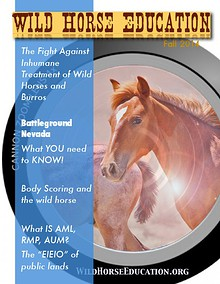 Wild Horse Education (Fall 2014)