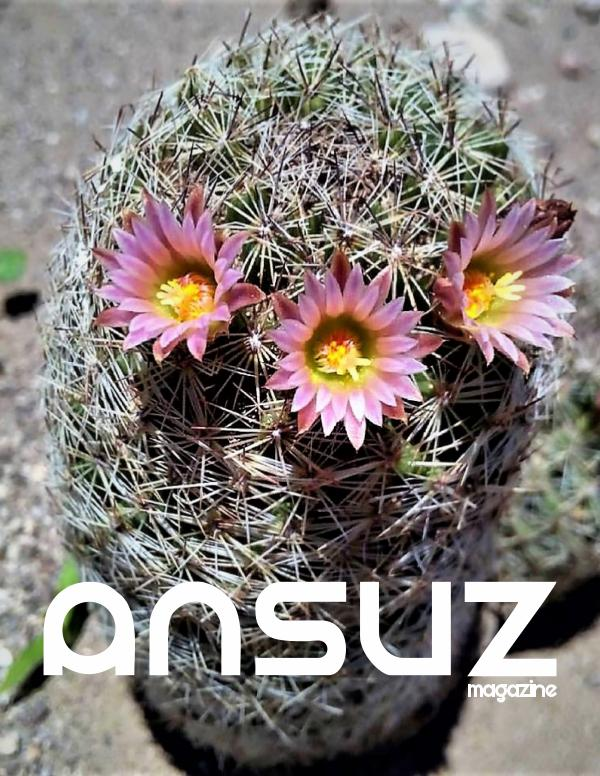 Ansuz Magazine Cuarto número. Febrero 2019