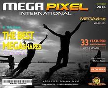 MPI BEST of MEGAShares Megazine 2014