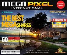MPI BEST of MEGAShares - November 2014 Vol 2014-02