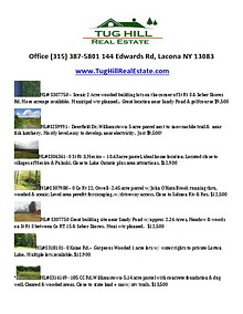Tug Hill Real Estate Properties For Sale