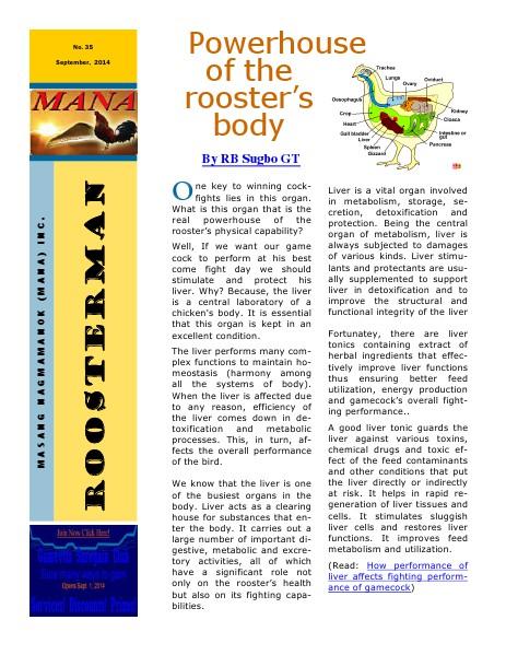 Roosterman 35