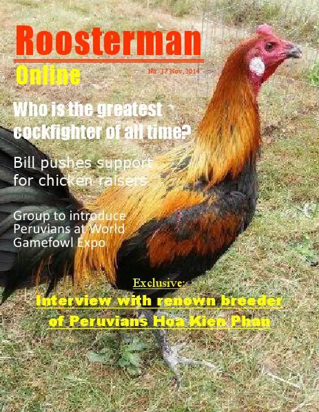 Roosterman 37