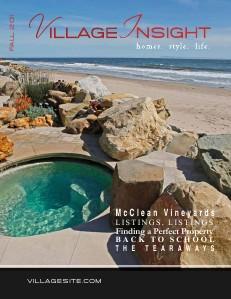 Village Insight Fall 2011