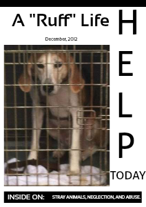 Abused, Stray, & Neglected Animals  December, 2012
