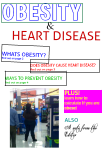 Can Obesity Kill You 1
