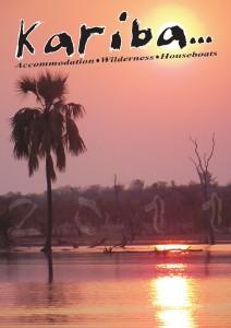 Kariba Supplement 2011 DI#1