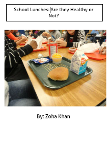 School Lunches, Are They Good or Not? Dec. 2012