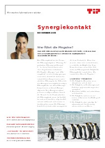 Synergiekontakt 2013 Synergiekontakt November 2013