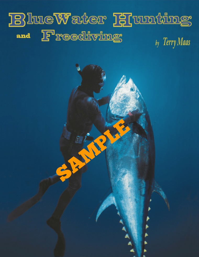 SAMPLE: BLUE WATER HUNTING AND FREEDIVING Introduction sample