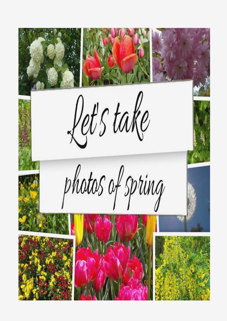 Let's Take Photos Of Spring Let's take photos of spring