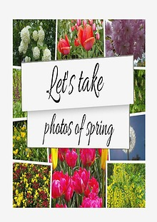 Let's Take Photos Of Spring