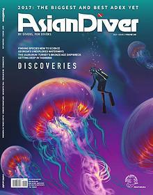 Asian Diver and Scuba Diver