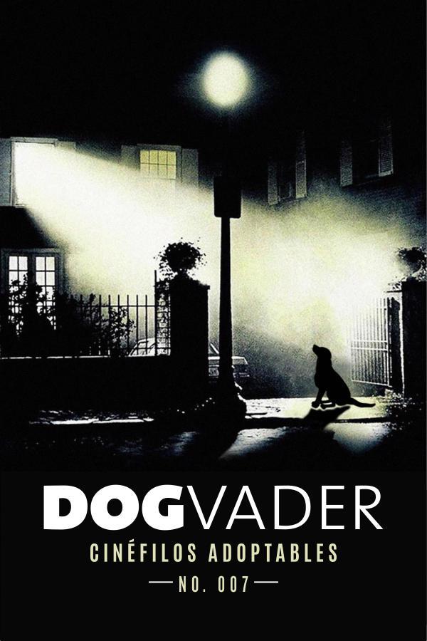 DogVader #007