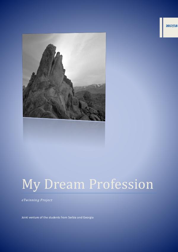 My Dream Profession My Dream Profession