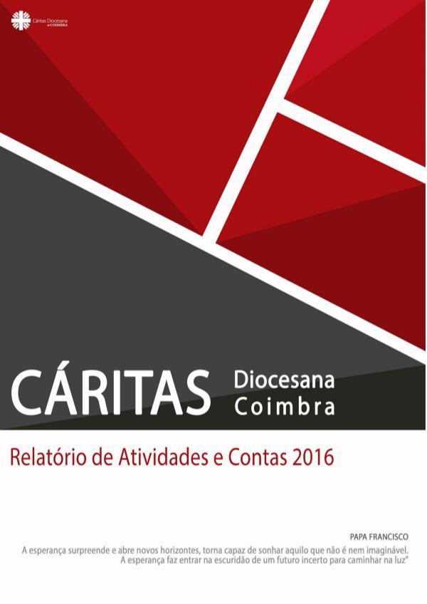 Relatório de Atividades e Contas 2016