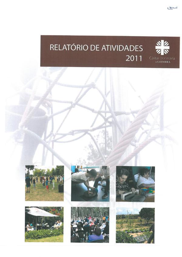 Relatório de Atividades 2011