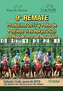 9º REMATE Productos 2017 y Polla de Potrillos Tres Haras 2020