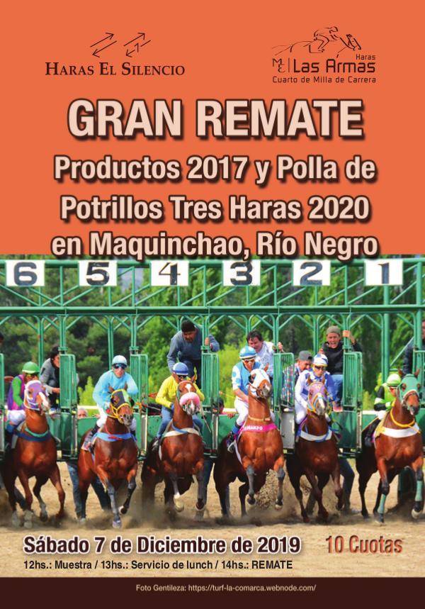 Gran Remate Tres Haras en Maquinchao Maquinchao19