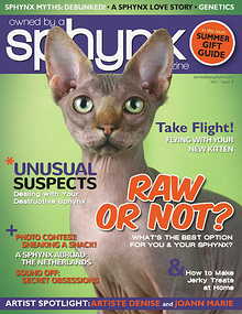 Owned by a Sphynx