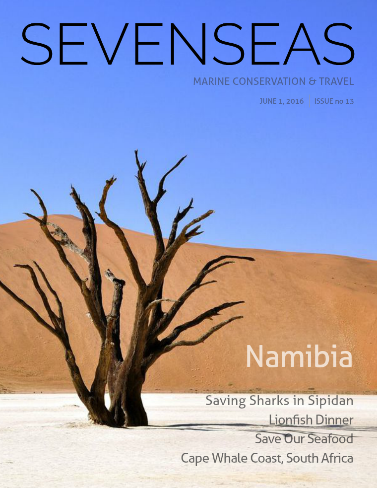 Issue 13, June 2016
