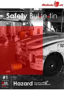 MGS Bulletin #1