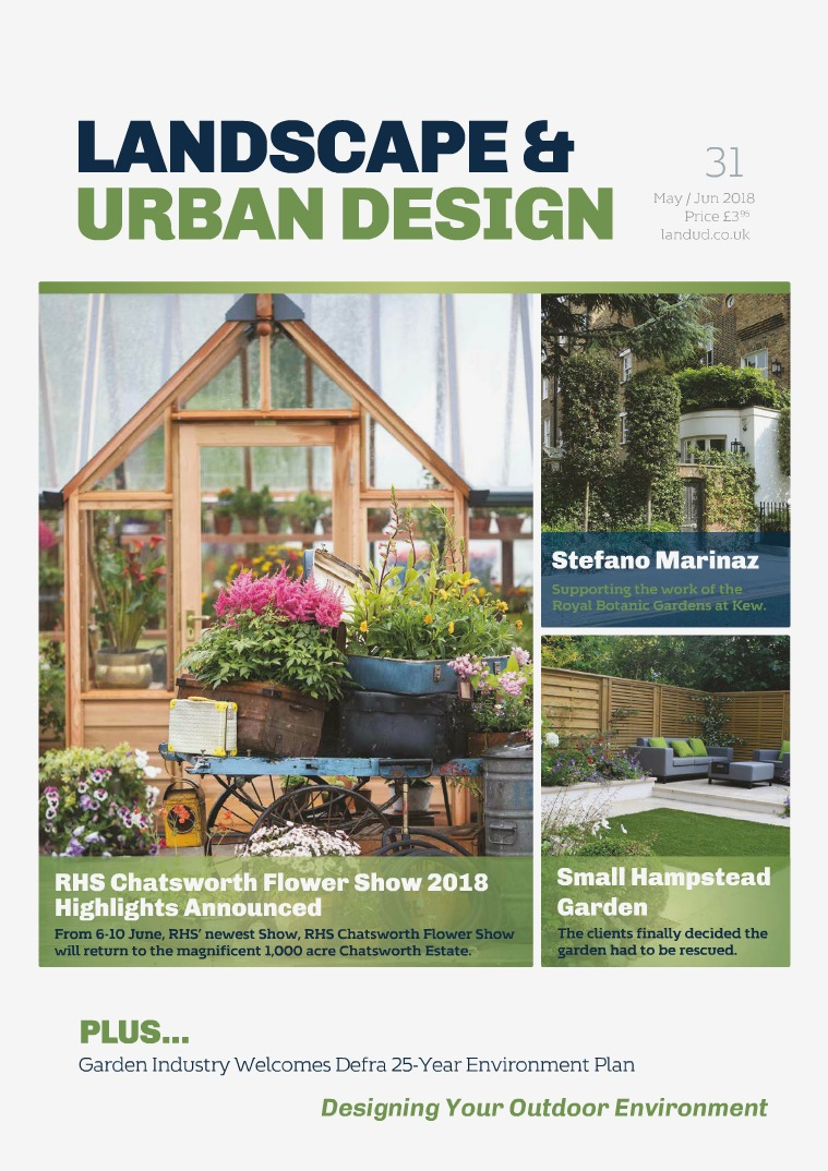 Issue 31 2018