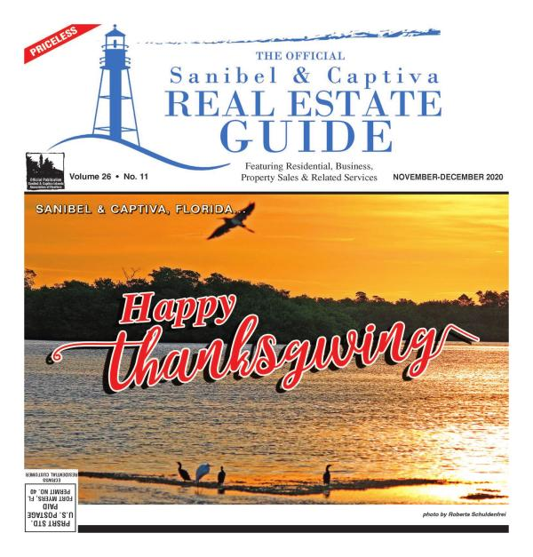 Real Estate Guide November 2020 Edition