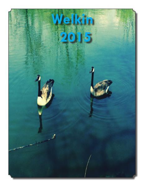 The Welkin 2015