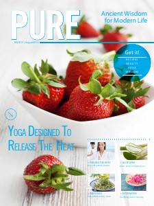 The System Preview August 2013