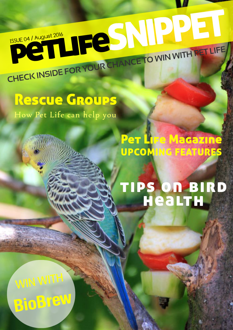 Issue 4 : August 2016
