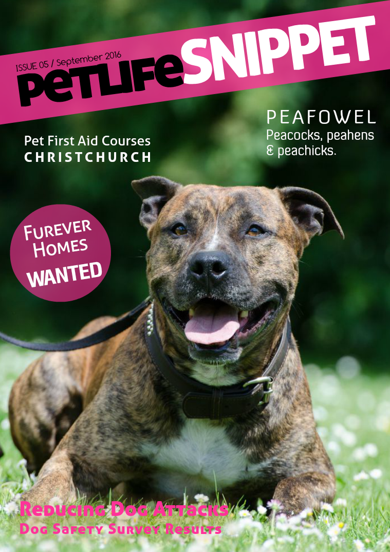 Pet Life SnipPET, New Zealand Issue 5 : September 2016