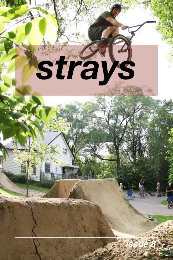 Strays BMX Strays 8