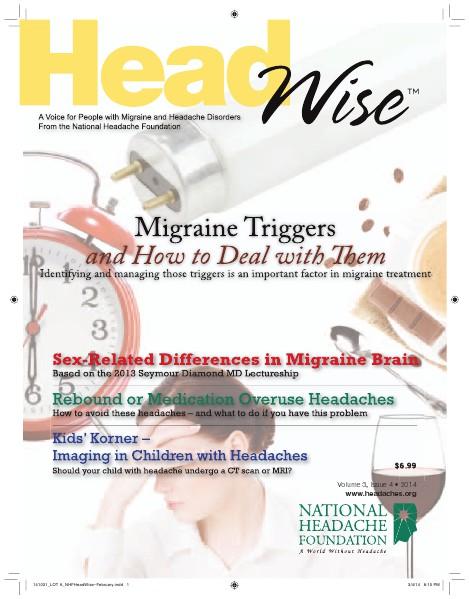 HeadWise: Volume 3, Issue 4