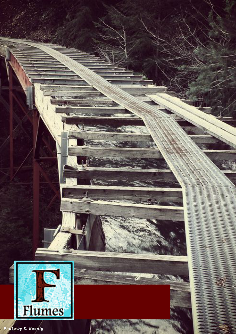 Flumes Volume 1 Issue 1