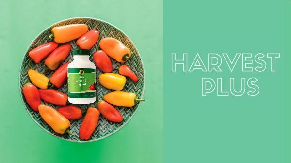 Harvest Plus - BM