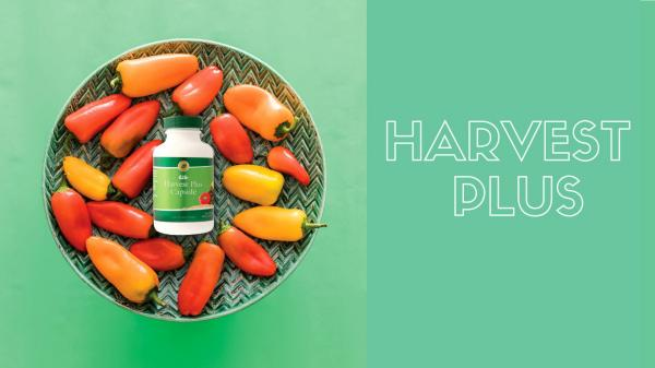 Harvest Plus - ENG