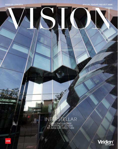 VISION Issue 29
