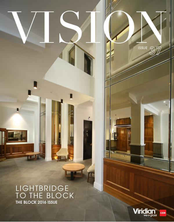VISION Issue 37