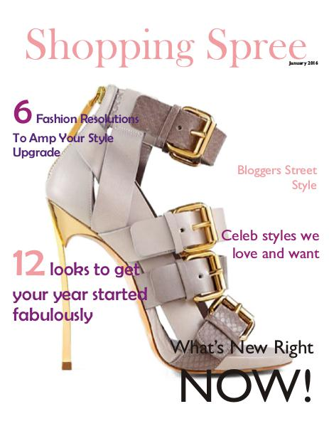 Shopping Spree Winter Fashion