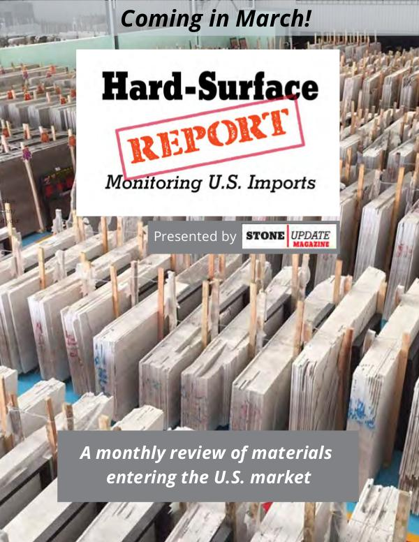 Hard Surface Report 2020 Media Planner