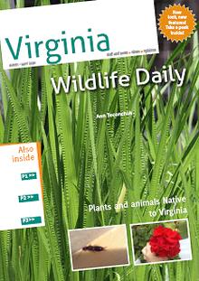 Virginia Creatures