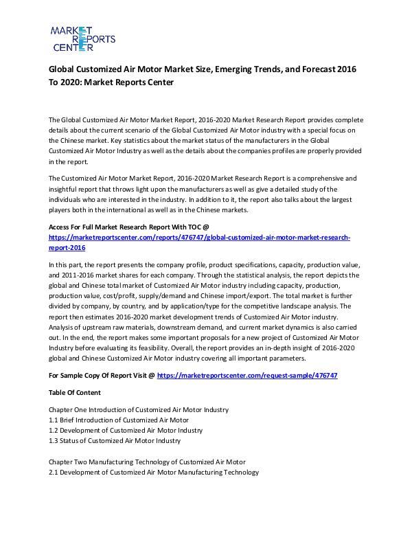 Global Customized Air Motor Market