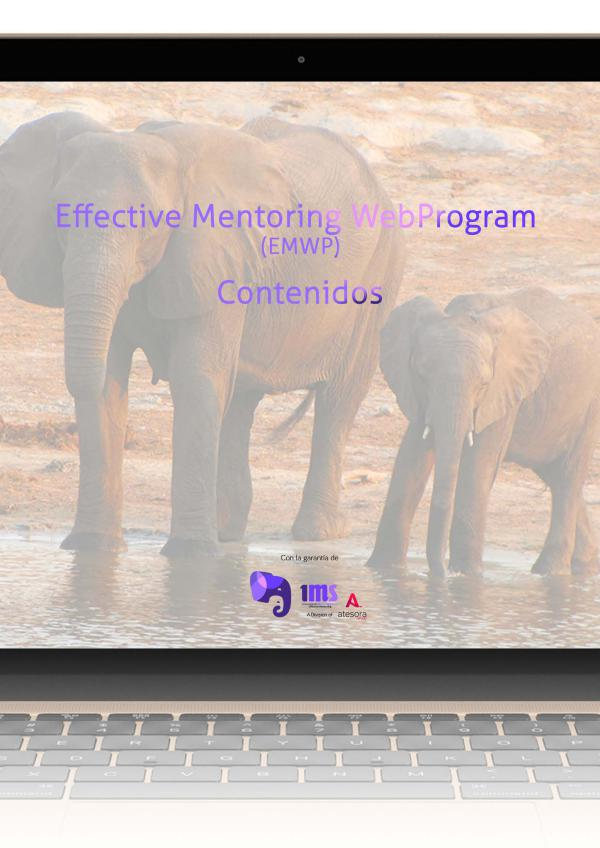 Contenidos de los módulos del programa de mentoring EMWP Contenidos-EMWP