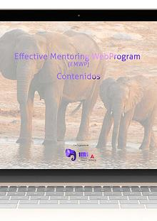 Contenidos de los módulos del programa de mentoring EMWP