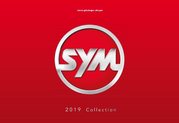 SYM - Motor 2017 SYM2017