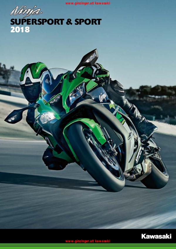 Kawasaki Supersport 2018