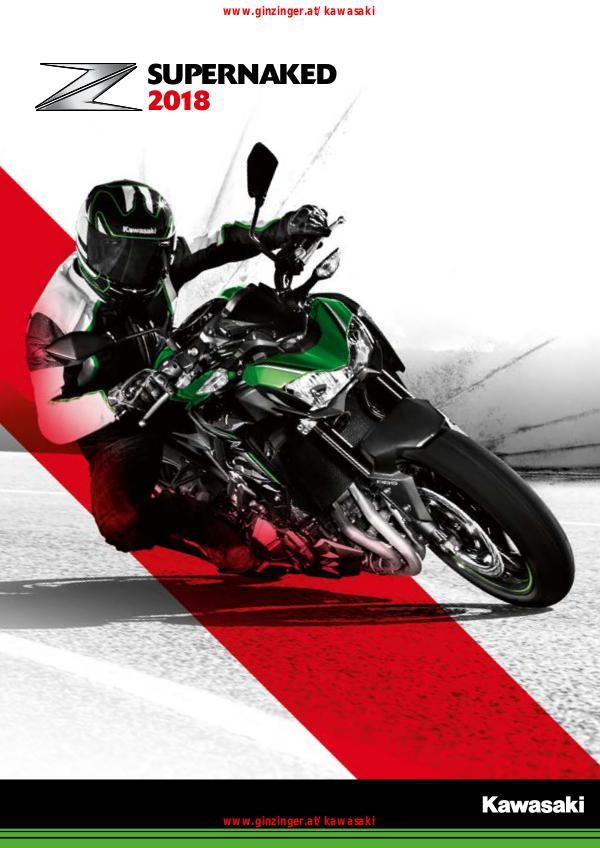 Kawasaki Supernaked 2018