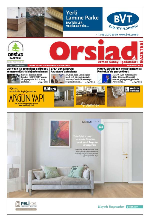 Orsiad Gazetesi Sayı 61 - Temmuz 2017
