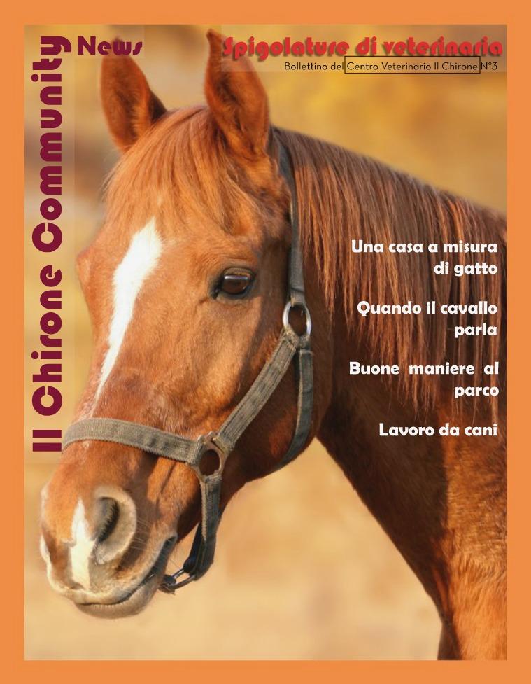 Il Chirone Community News 3° Bollettino